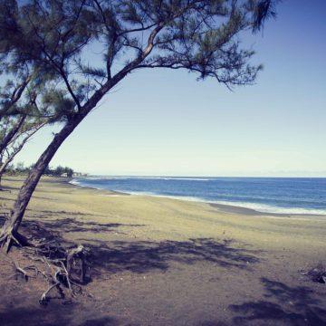 Vivre dans les DOM-TOM : une expérience sur l'île de la Réunion