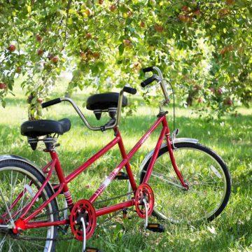 Vivre une aventure en famille : un vélo trip ?